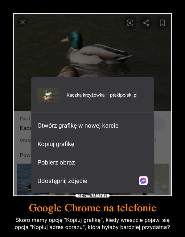"""Google Chrome na telefonie – Skoro mamy opcję """"Kopiuj grafikę"""", kiedy wreszcie pojawi się opcja """"Kopiuj adres obrazu"""", która byłaby bardziej przydatna?"""
