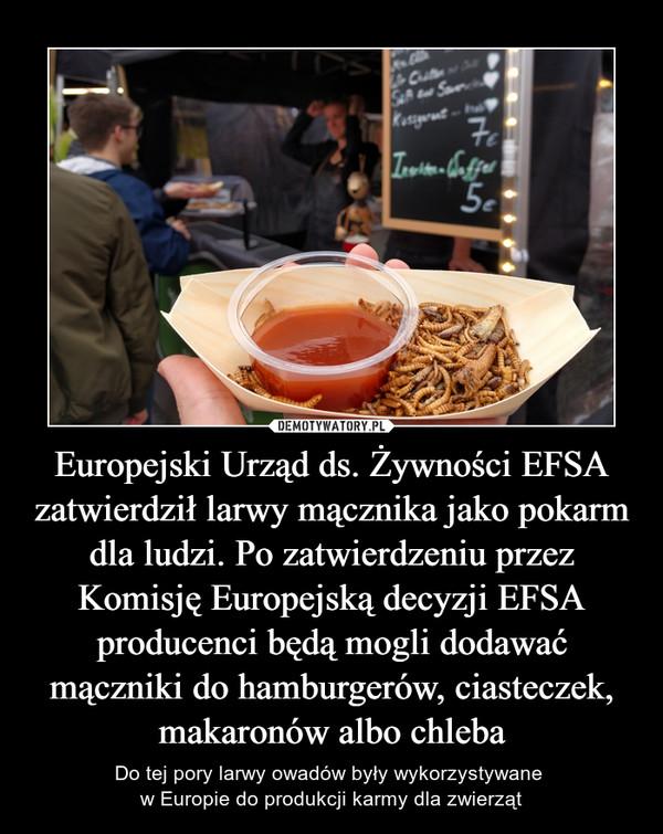 Europejski Urząd ds. Żywności EFSA zatwierdził larwy mącznika jako pokarm dla ludzi. Po zatwierdzeniu przez Komisję Europejską decyzji EFSA producenci będą mogli dodawać mączniki do hamburgerów, ciasteczek, makaronów albo chleba – Do tej pory larwy owadów były wykorzystywane w Europie do produkcji karmy dla zwierząt