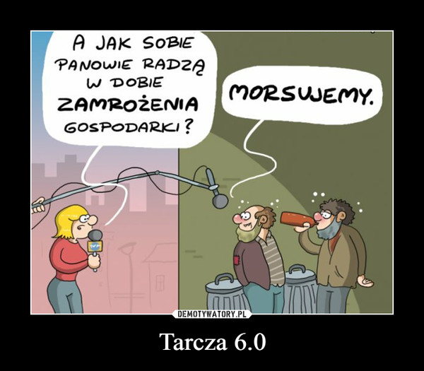 Tarcza 6.0 –
