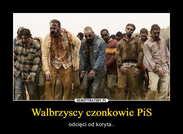 Walbrzyscy czonkowie PiS – odcięci od koryta..