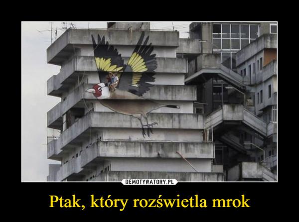 Ptak, który rozświetla mrok –