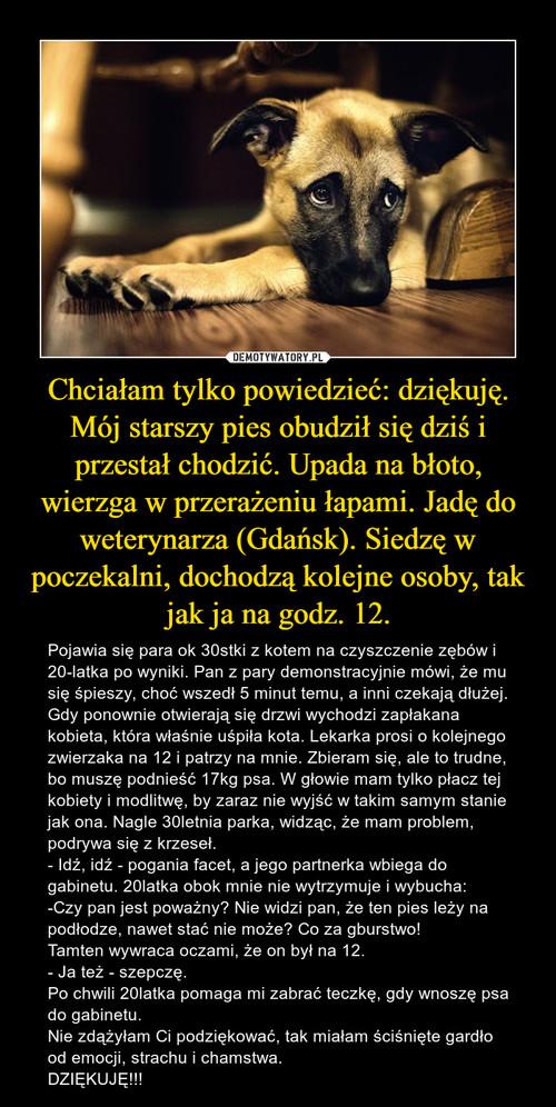 Chciałam tylko powiedzieć: dziękuję. Mój starszy pies obudził się dziś i przestał chodzić. Upada na błoto, wierzga w przerażeniu łapami. Jadę do weterynarza (Gdańsk). Siedzę w poczekalni, dochodzą kolejne osoby, tak jak ja na godz. 12.