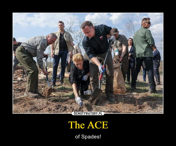 The ACE – of Spades!