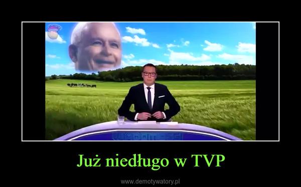 Już niedługo w TVP –