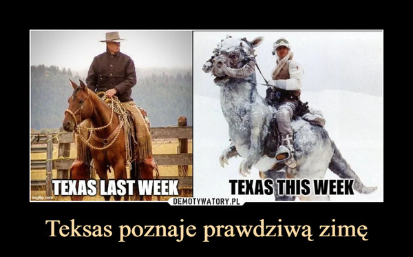 Teksas poznaje prawdziwą zimę –