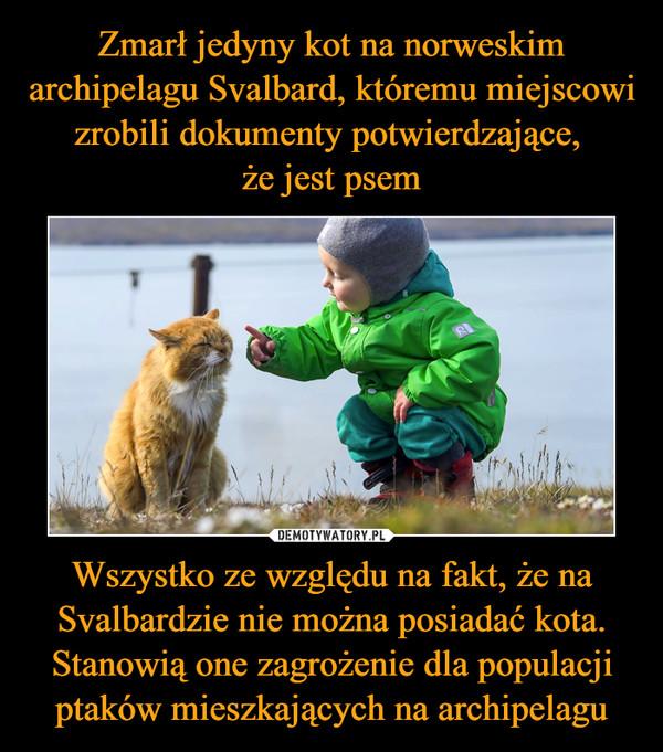 Wszystko ze względu na fakt, że na Svalbardzie nie można posiadać kota. Stanowią one zagrożenie dla populacji ptaków mieszkających na archipelagu –