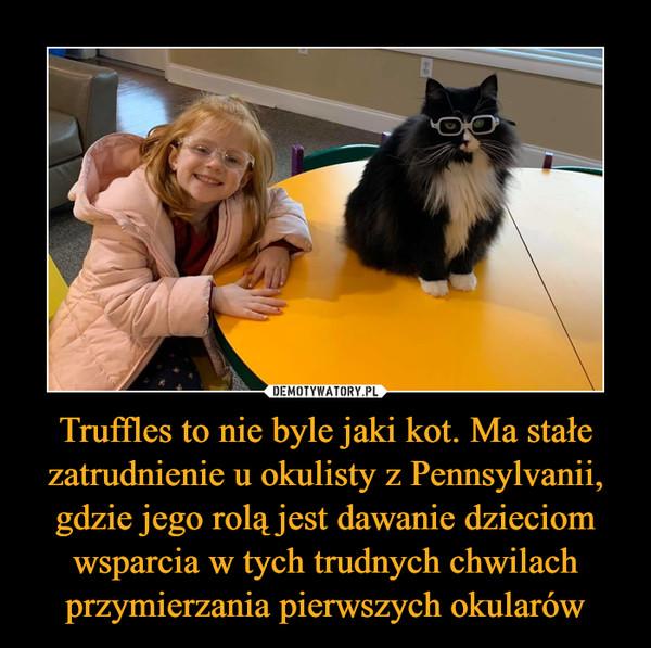 Truffles to nie byle jaki kot. Ma stałe zatrudnienie u okulisty z Pennsylvanii, gdzie jego rolą jest dawanie dzieciom wsparcia w tych trudnych chwilach przymierzania pierwszych okularów –