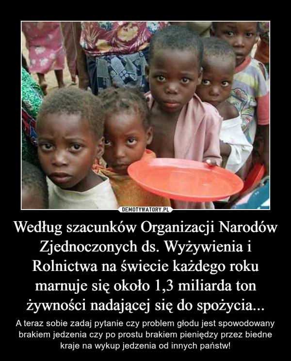 Według szacunków Organizacji Narodów Zjednoczonych ds. Wyżywienia i Rolnictwa na świecie każdego roku marnuje się około 1,3 miliarda ton żywności nadającej się do spożycia... – A teraz sobie zadaj pytanie czy problem głodu jest spowodowany brakiem jedzenia czy po prostu brakiem pieniędzy przez biedne kraje na wykup jedzenia od innych państw!