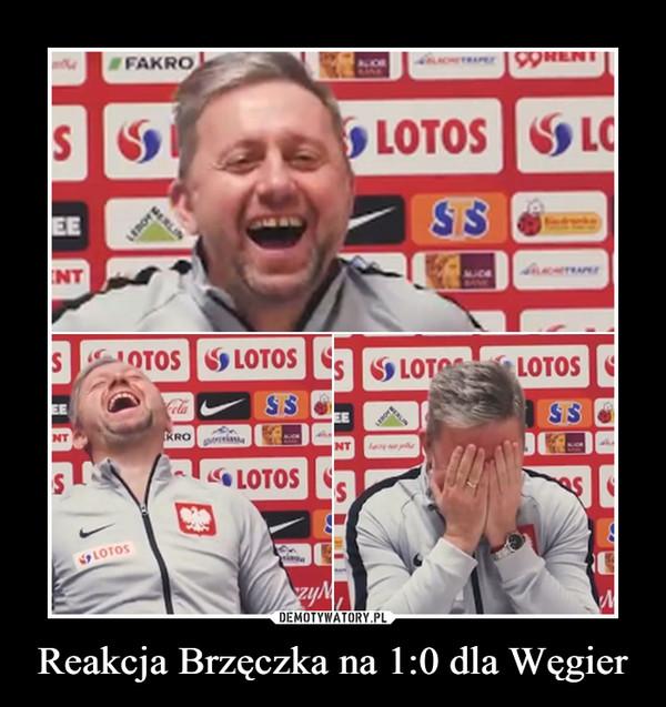 Reakcja Brzęczka na 1:0 dla Węgier –