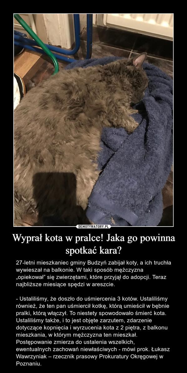 """Wyprał kota w pralce! Jaka go powinna spotkać kara? – 27-letni mieszkaniec gminy Budzyń zabijał koty, a ich truchła wywieszał na balkonie. W taki sposób mężczyzna """"opiekował"""" się zwierzętami, które przyjął do adopcji. Teraz najbliższe miesiące spędzi w areszcie.- Ustaliliśmy, że doszło do uśmiercenia 3 kotów. Ustaliliśmy również, że ten pan uśmiercił kotkę, którą umieścił w bębnie pralki, którą włączył. To niestety spowodowało śmierć kota. Ustaliliśmy także, i to jest objęte zarzutem, zdarzenie dotyczące kopnięcia i wyrzucenia kota z 2 piętra, z balkonu mieszkania, w którym mężczyzna ten mieszkał. Postępowanie zmierza do ustalenia wszelkich, ewentualnych zachowań niewłaściwych - mówi prok. Łukasz Wawrzyniak – rzecznik prasowy Prokuratury Okręgowej w Poznaniu."""