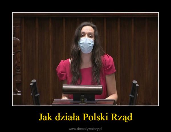 Jak działa Polski Rząd –