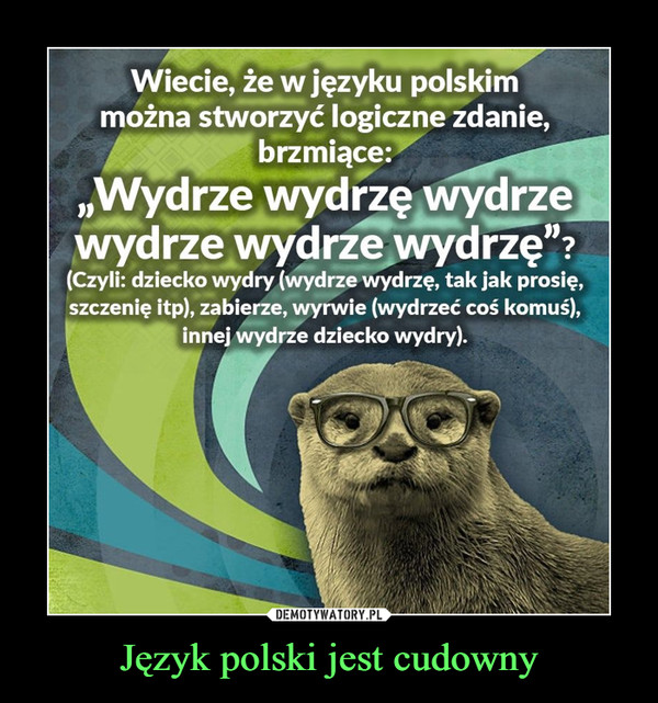 """Język polski jest cudowny –  Wiecie, że w języku polskimmożna stworzyć logiczne zdanie,brzmiące:""""Wydrze wydrzę wydrzewydrze wydrze wydrzę""""?(Czyli: dziecko wydry (wydrze wydrzę, tak jak prosię,szczenię itp), zabierze, wyrwie (wydrzeć coś komuś),innej wydrze dziecko wydry)."""