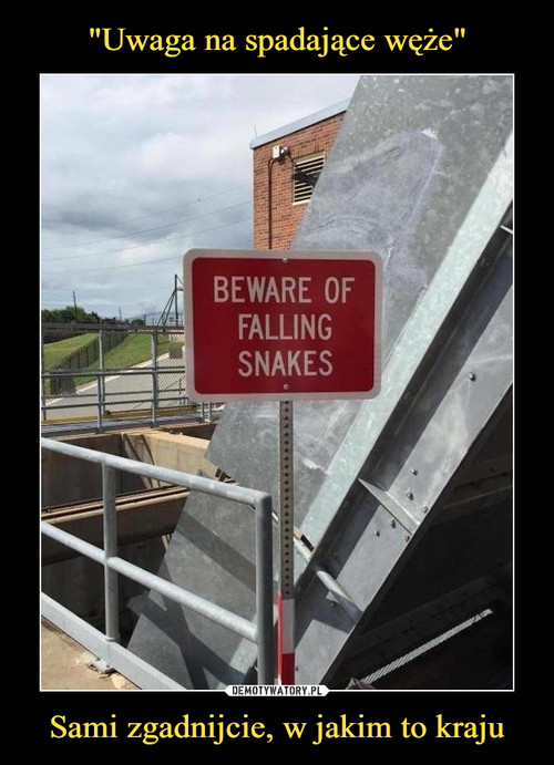 """""""Uwaga na spadające węże"""" Sami zgadnijcie, w jakim to kraju"""