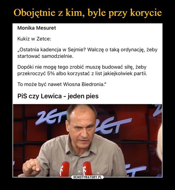 """–  Monika Mesuret Kukiz w Zetce: """"Ostatnia kadencja w Sejmie? Walczę o taką ordynację, żeby startować samodzielnie. Dopóki nie mogę tego zrobić muszę budować siłę, żeby przekroczyć 5% albo korzystać z list jakiejkolwiek partii. To może być nawet Wiosna Biedronia."""" PiS czy Lewica - jeden pies"""