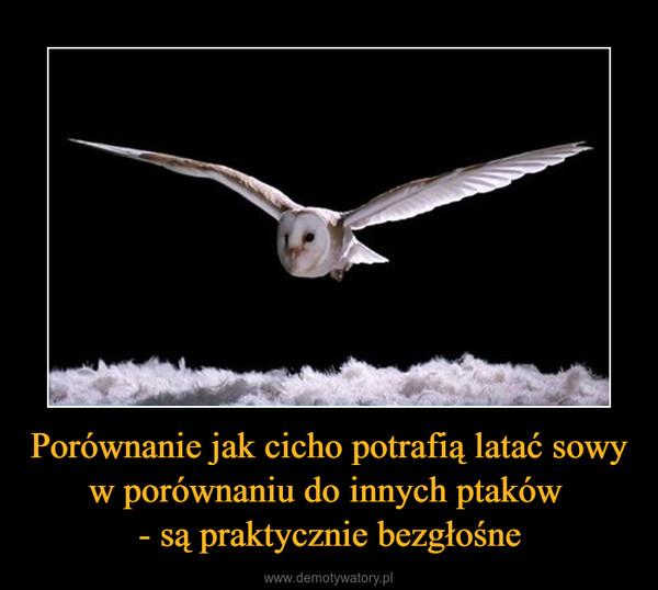 Porównanie jak cicho potrafią latać sowy w porównaniu do innych ptaków - są praktycznie bezgłośne –