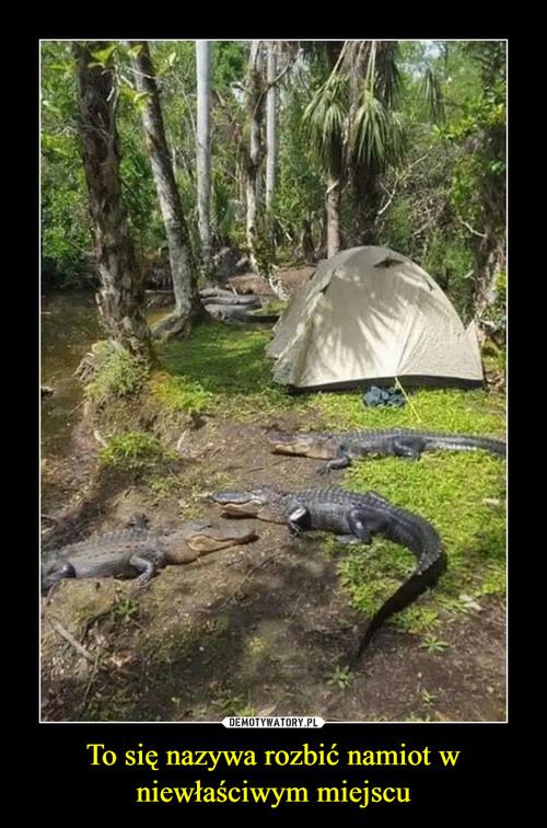 To się nazywa rozbić namiot w niewłaściwym miejscu