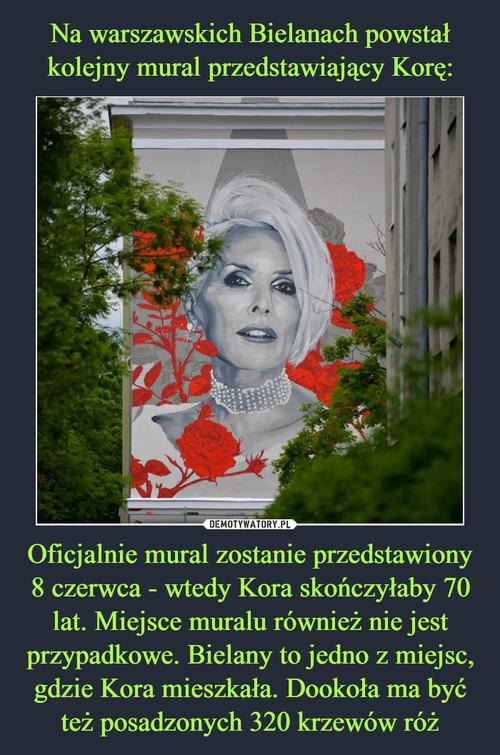 Na warszawskich Bielanach powstał kolejny mural przedstawiający Korę: Oficjalnie mural zostanie przedstawiony 8 czerwca - wtedy Kora skończyłaby 70 lat. Miejsce muralu również nie jest przypadkowe. Bielany to jedno z miejsc, gdzie Kora mieszkała. Dookoła ma być też posadzonych 320 krzewów róż