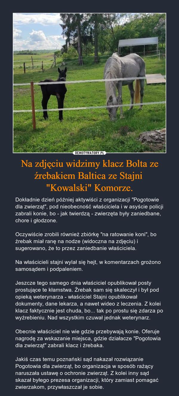 """Na zdjęciu widzimy klacz Bolta ze źrebakiem Baltica ze Stajni """"Kowalski"""" Komorze. – Dokładnie dzień później aktywiści z organizacji """"Pogotowie dla zwierząt"""", pod nieobecność właściciela i w asyście policji zabrali konie, bo - jak twierdzą - zwierzęta były zaniedbane, chore i głodzone.Oczywiście zrobili również zbiórkę """"na ratowanie koni"""", bo źrebak miał ranę na nodze (widoczna na zdjęciu) i sugerowano, że to przez zaniedbanie właściciela.Na właścicieli stajni wylał się hejt, w komentarzach grożono samosądem i podpaleniem.Jeszcze tego samego dnia właściciel opublikował posty prostujące te kłamstwa. Źrebak sam się skaleczył i był pod opieką weterynarza - właściciel Stajni opublikował dokumenty, dane lekarza, a nawet wideo z leczenia. Z kolei klacz faktycznie jest chuda, bo... tak po prostu się zdarza po wyźrebieniu. Nad wszystkim czuwał jednak weterynarz.Obecnie właściciel nie wie gdzie przebywają konie. Oferuje nagrodę za wskazanie miejsca, gdzie działacze """"Pogotowia dla zwierząt"""" zabrali klacz i źrebaka.Jakiś czas temu poznański sąd nakazał rozwiązanie Pogotowia dla zwierząt, bo organizacja w sposób rażący naruszała ustawę o ochronie zwierząt. Z kolei inny sąd skazał byłego prezesa organizacji, który zamiast pomagać zwierzakom, przywłaszczał je sobie."""