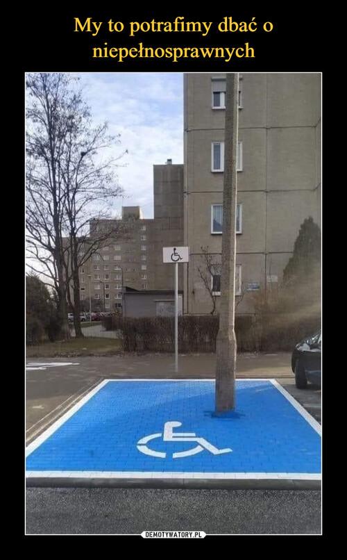 My to potrafimy dbać o niepełnosprawnych
