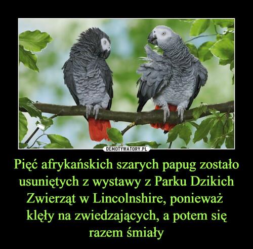 Pięć afrykańskich szarych papug zostało usuniętych z wystawy z Parku Dzikich Zwierząt w Lincolnshire, ponieważ  klęły na zwiedzających, a potem się razem śmiały