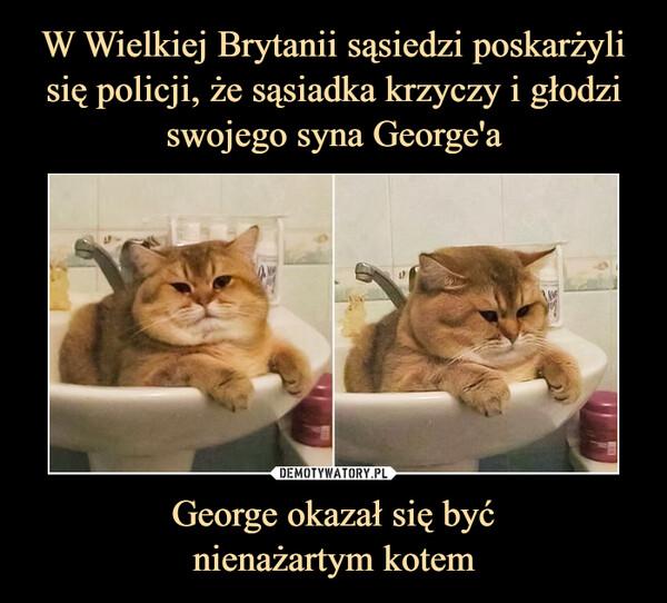 George okazał się byćnienażartym kotem –