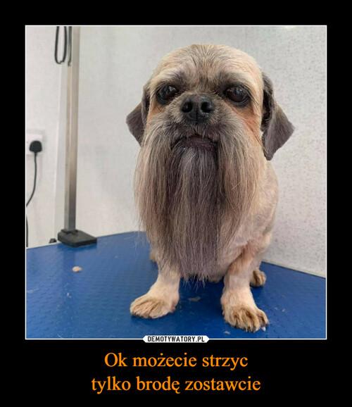 Ok możecie strzyc tylko brodę zostawcie