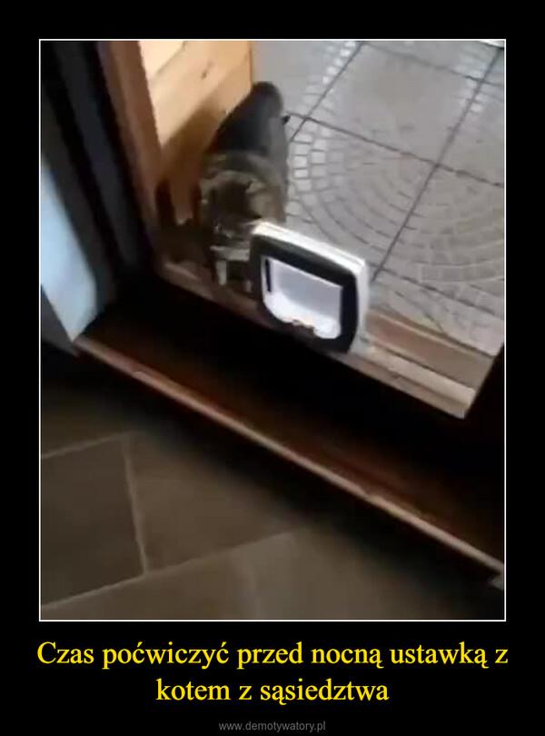 Czas poćwiczyć przed nocną ustawką z kotem z sąsiedztwa –